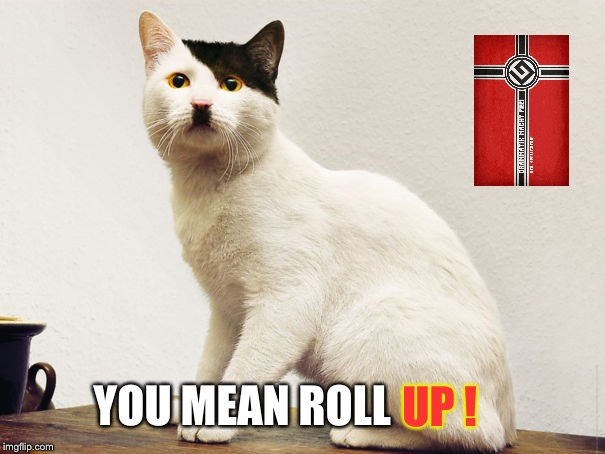 Hitler Cat | UP ! YOU MEAN ROLL | image tagged in hitler cat | made w/ Imgflip meme maker