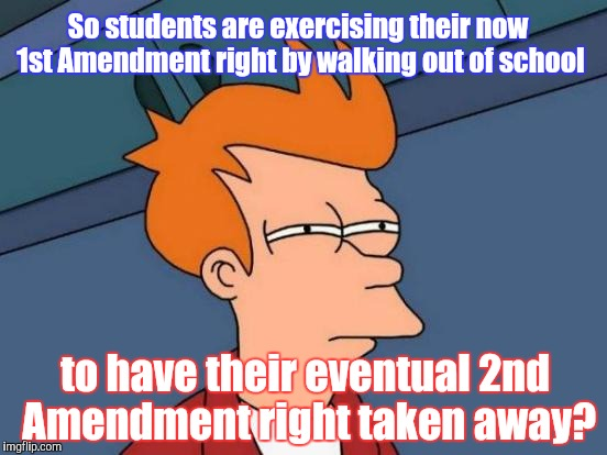 Oh! The irony! | So students are exercising their now 1st Amendment right by walking out of school to have their eventual 2nd Amendment right taken away? | image tagged in memes,futurama fry | made w/ Imgflip meme maker