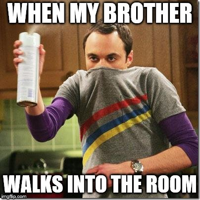 air freshener sheldon cooper | WHEN MY BROTHER WALKS INTO THE ROOM | image tagged in air freshener sheldon cooper | made w/ Imgflip meme maker