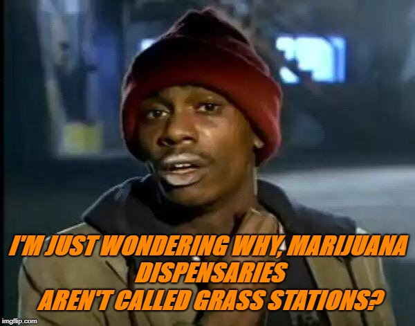 Marijuana Dispensaries | I'M JUST WONDERING WHY, MARIJUANA DISPENSARIES AREN'T CALLED GRASS STATIONS? | image tagged in y'all got any more of that,marijuana,grass,drug humor,legalize weed,weed | made w/ Imgflip meme maker