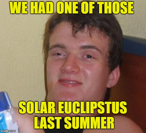 10 Guy Meme | WE HAD ONE OF THOSE SOLAR EUCLIPSTUS LAST SUMMER | image tagged in memes,10 guy | made w/ Imgflip meme maker
