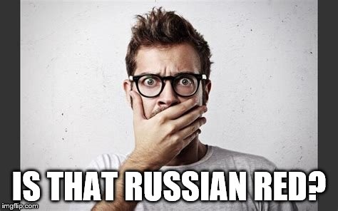 IS THAT RUSSIAN RED? | made w/ Imgflip meme maker