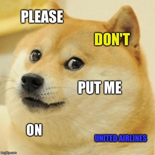 United Airlines terrorizes dogs | PLEASE DON'T PUT ME ON UNITED AIRLINES | image tagged in memes,doge,united airlines,dog week,request,no | made w/ Imgflip meme maker
