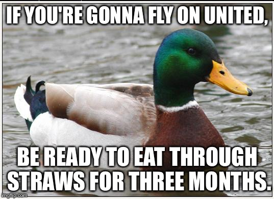 United Airlines makes you eat through straws | IF YOU'RE GONNA FLY ON UNITED, BE READY TO EAT THROUGH STRAWS FOR THREE MONTHS. | image tagged in memes,actual advice mallard,united airlines,eating,punch,hungry | made w/ Imgflip meme maker