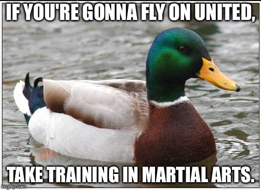 United Airlines passengers should learn Martial Arts | IF YOU'RE GONNA FLY ON UNITED, TAKE TRAINING IN MARTIAL ARTS. | image tagged in memes,actual advice mallard,martial arts,fight,united airlines,punch | made w/ Imgflip meme maker