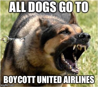 All Dogs Go To Boycott United Airlines | ALL DOGS GO TO BOYCOTT UNITED AIRLINES | image tagged in angry dog,memes,united airlines,boycott,flight,protest | made w/ Imgflip meme maker