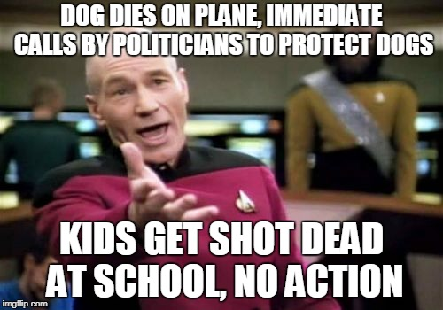 Dogs over Kids | DOG DIES ON PLANE, IMMEDIATE CALLS BY POLITICIANS TO PROTECT DOGS KIDS GET SHOT DEAD AT SCHOOL, NO ACTION | image tagged in memes,picard wtf,guns,school shooting,nra,dogs | made w/ Imgflip meme maker