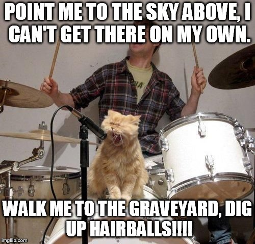 POINT ME TO THE SKY ABOVE, I CAN'T GET THERE ON MY OWN. WALK ME TO THE GRAVEYARD, DIG UP HAIRBALLS!!!! | image tagged in singing cat | made w/ Imgflip meme maker