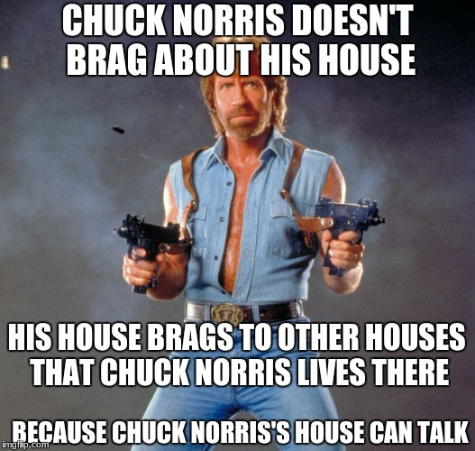 Chuck Norris Guns Meme | CHUCK NORRIS DOESN'T BRAG ABOUT HIS HOUSE HIS HOUSE BRAGS TO OTHER HOUSES THAT CHUCK NORRIS LIVES THERE BECAUSE CHUCK NORRIS'S HOUSE CAN TAL | image tagged in memes,chuck norris guns,chuck norris | made w/ Imgflip meme maker