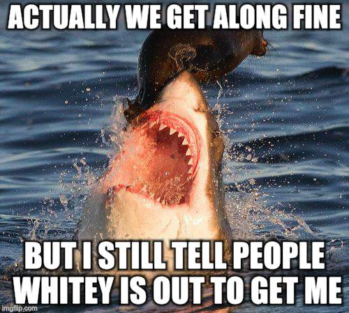 Travelonshark Meme | ACTUALLY WE GET ALONG FINE BUT I STILL TELL PEOPLE WHITEY IS OUT TO GET ME | image tagged in memes,travelonshark | made w/ Imgflip meme maker