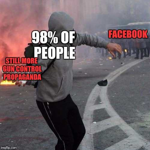 Here,have this | 98% OF PEOPLE STILL MORE GUN CONTROL PROPAGANDA FACEBOOK | image tagged in here,have this | made w/ Imgflip meme maker