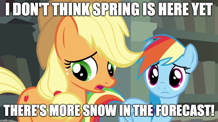 Well... shit! | I DON'T THINK SPRING IS HERE YET THERE'S MORE SNOW IN THE FORECAST! | image tagged in memes,ponies,winter,spring,snow,well shit | made w/ Imgflip meme maker