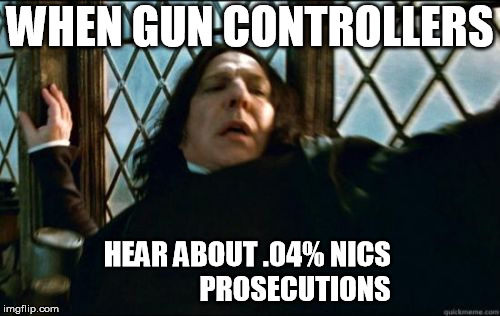 Snape Meme |  WHEN GUN CONTROLLERS; HEAR ABOUT .04% NICS                 PROSECUTIONS | image tagged in memes,snape | made w/ Imgflip meme maker