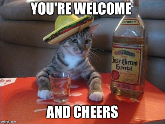 YOU'RE WELCOME AND CHEERS | made w/ Imgflip meme maker
