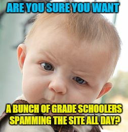 Skeptical Baby Meme | ARE YOU SURE YOU WANT A BUNCH OF GRADE SCHOOLERS SPAMMING THE SITE ALL DAY? | image tagged in memes,skeptical baby | made w/ Imgflip meme maker