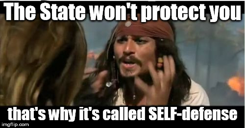 Why Is The Rum Gone Meme |  The State won't protect you; that's why it's called SELF-defense | image tagged in memes,why is the rum gone | made w/ Imgflip meme maker