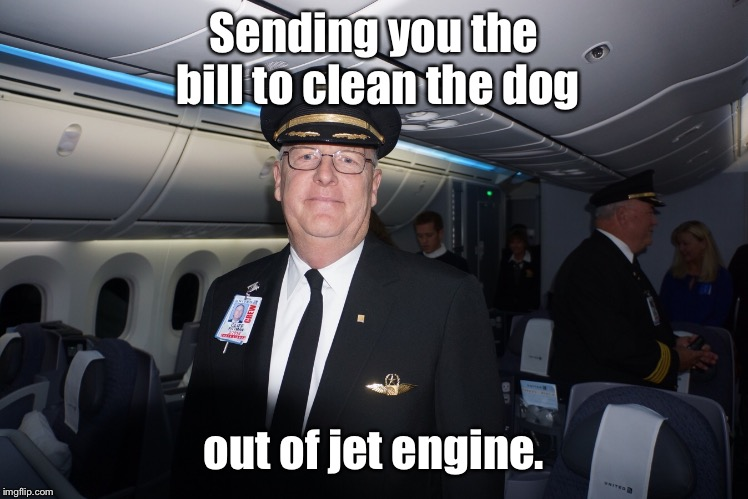 Sending you the bill to clean the dog out of jet engine. | made w/ Imgflip meme maker