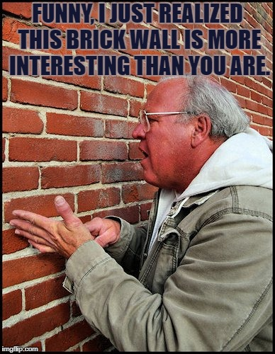 FUNNY, I JUST REALIZED THIS BRICK WALL IS MORE INTERESTING THAN YOU ARE. | image tagged in like talking to a brick wall 2 | made w/ Imgflip meme maker