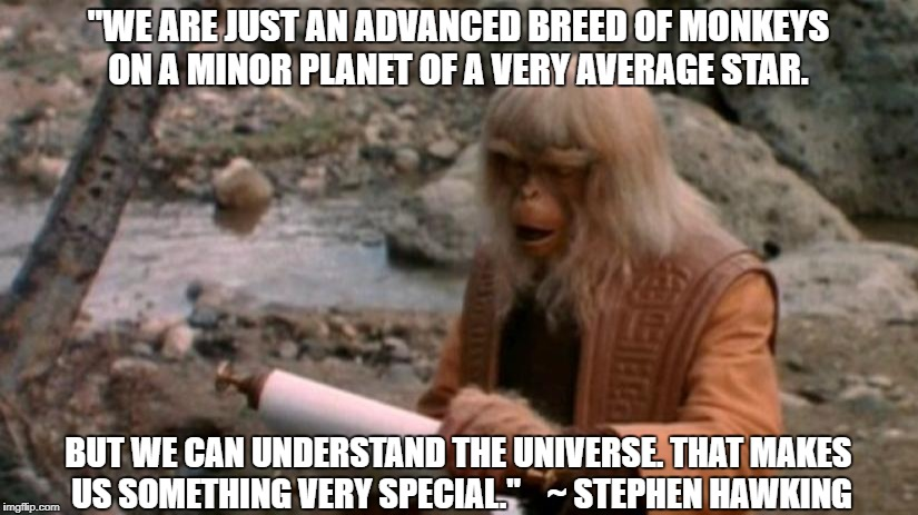 "Stephen Hawking quote | ""WE ARE JUST AN ADVANCED BREED OF MONKEYS ON A MINOR PLANET OF A VERY AVERAGE STAR. BUT WE CAN UNDERSTAND THE UNIVERSE. THAT MAKES US SOMETH 