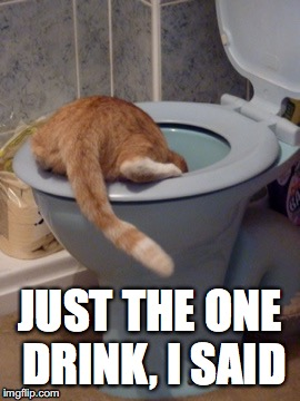 So many regrets | JUST THE ONE DRINK, I SAID | image tagged in drunk,friday night,drinking,funny cats,funny cat memes,regrets | made w/ Imgflip meme maker