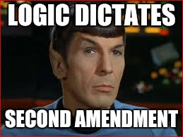 LOGIC DICTATES SECOND AMENDMENT | made w/ Imgflip meme maker