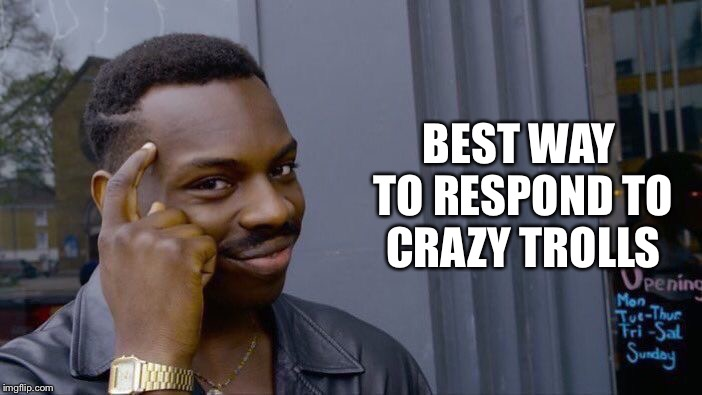 Roll Safe Think About It Meme | BEST WAY TO RESPOND TO CRAZY TROLLS | image tagged in memes,roll safe think about it | made w/ Imgflip meme maker