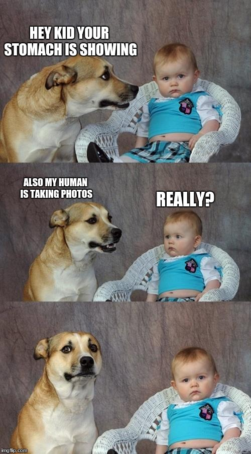 Dad Joke Dog Meme | HEY KID YOUR STOMACH IS SHOWING ALSO MY HUMAN IS TAKING PHOTOS REALLY? | image tagged in memes,dad joke dog | made w/ Imgflip meme maker