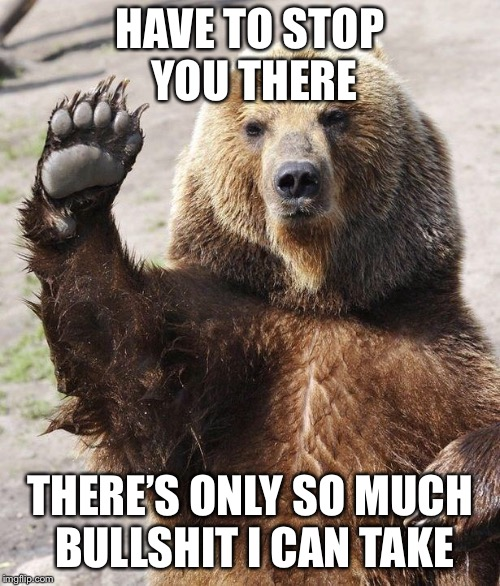 Hello bear | HAVE TO STOP YOU THERE THERE'S ONLY SO MUCH BULLSHIT I CAN TAKE | image tagged in hello bear | made w/ Imgflip meme maker