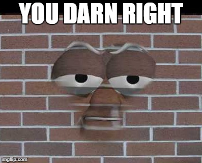 YOU DARN RIGHT | made w/ Imgflip meme maker