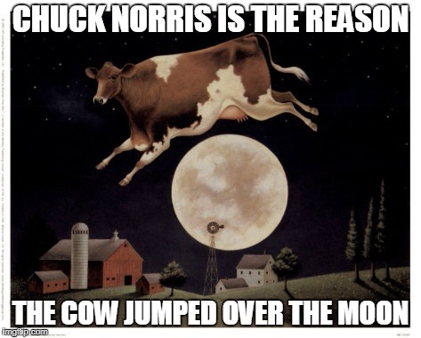 Chuck Norris cow | CHUCK NORRIS IS THE REASON THE COW JUMPED OVER THE MOON | image tagged in chuck norris,memes,cow | made w/ Imgflip meme maker