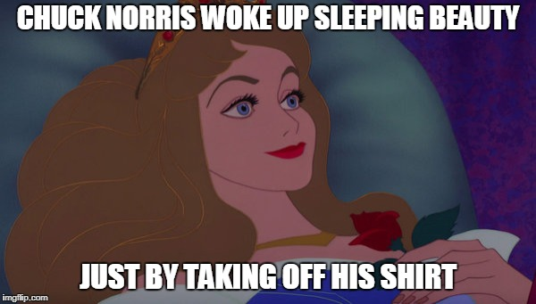 Chuck Norris Sleeping Beauty | CHUCK NORRIS WOKE UP SLEEPING BEAUTY JUST BY TAKING OFF HIS SHIRT | image tagged in chuck norris,sleeping beauty,memes | made w/ Imgflip meme maker