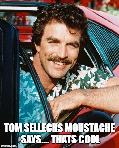 tom selleck moustache bottom text | TOM SELLECKS MOUSTACHE SAYS.... THATS COOL | image tagged in moustache,bottom,ferrari,hawaiian | made w/ Imgflip meme maker