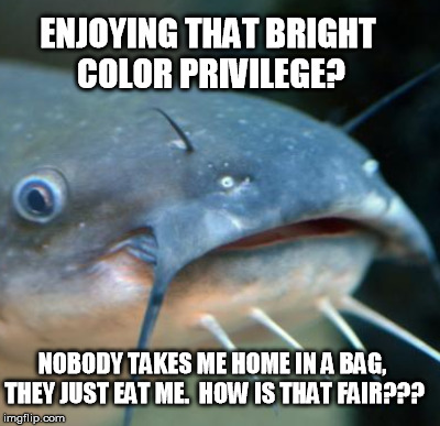 ENJOYING THAT BRIGHT COLOR PRIVILEGE? NOBODY TAKES ME HOME IN A BAG, THEY JUST EAT ME.  HOW IS THAT FAIR??? | made w/ Imgflip meme maker