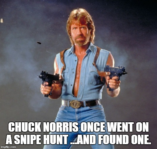 Chuck Norris Guns | CHUCK NORRIS ONCE WENT ON A SNIPE HUNT ...AND FOUND ONE. | image tagged in memes,chuck norris guns,chuck norris | made w/ Imgflip meme maker