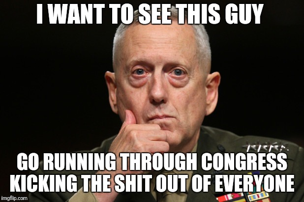 I WANT TO SEE THIS GUY GO RUNNING THROUGH CONGRESS KICKING THE SHIT OUT OF EVERYONE | image tagged in general mattis | made w/ Imgflip meme maker
