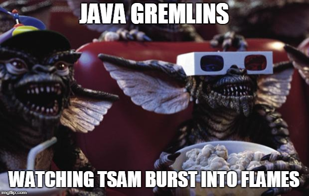 JAVA GREMLINS WATCHING TSAM BURST INTO FLAMES | image tagged in gremlins popcorn | made w/ Imgflip meme maker