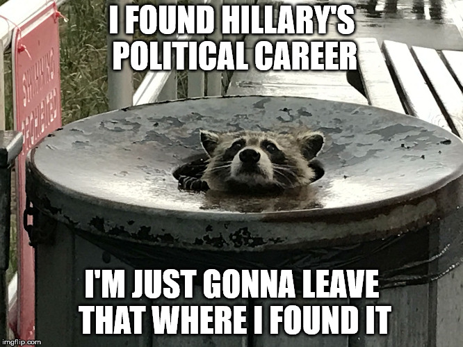 I FOUND HILLARY'S POLITICAL CAREER I'M JUST GONNA LEAVE THAT WHERE I FOUND IT | made w/ Imgflip meme maker