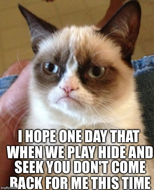 Grumpy Cat Meme | I HOPE ONE DAY THAT WHEN WE PLAY HIDE AND SEEK YOU DON'T COME BACK FOR ME THIS TIME | image tagged in memes,grumpy cat | made w/ Imgflip meme maker