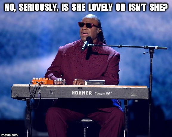 Stevie Wonder Is she lovely or isn't she? | NO,  SERIOUSLY,  IS  SHE  LOVELY  OR  ISN'T  SHE? | image tagged in stevie wonder | made w/ Imgflip meme maker