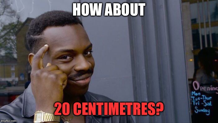 Roll Safe Think About It Meme | HOW ABOUT 20 CENTIMETRES? | image tagged in memes,roll safe think about it | made w/ Imgflip meme maker