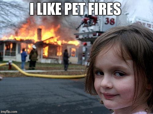 Disaster Girl Meme | I LIKE PET FIRES | image tagged in memes,disaster girl | made w/ Imgflip meme maker