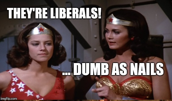 Wonder Woman vs The Lib | THEY'RE LIBERALS! ... DUMB AS NAILS | image tagged in funny,memes,gifs,wonder woman,liberals | made w/ Imgflip meme maker