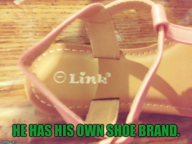 Who would have known?! | HE HAS HIS OWN SHOE BRAND. | image tagged in link,legend of zelda,shoes,memes,wow | made w/ Imgflip meme maker