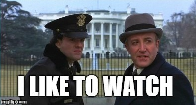 i like to watch | image tagged in being there,i like to watch,trump,peter sellers | made w/ Imgflip meme maker