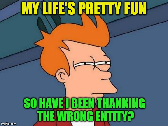 Futurama Fry Meme | MY LIFE'S PRETTY FUN SO HAVE I BEEN THANKING THE WRONG ENTITY? | image tagged in memes,futurama fry | made w/ Imgflip meme maker