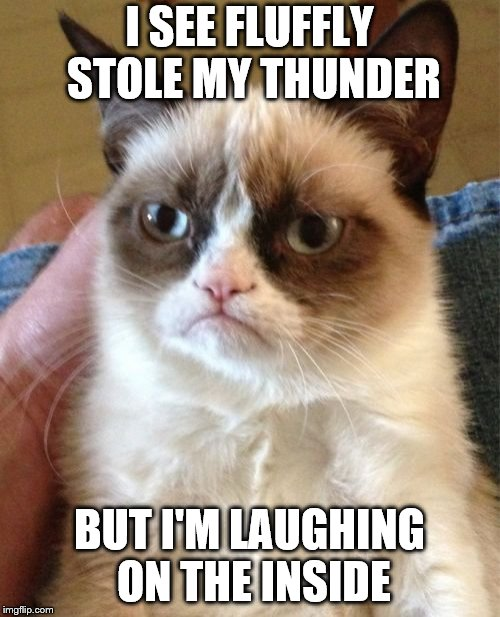 Grumpy Cat Meme | I SEE FLUFFLY STOLE MY THUNDER BUT I'M LAUGHING ON THE INSIDE | image tagged in memes,grumpy cat | made w/ Imgflip meme maker