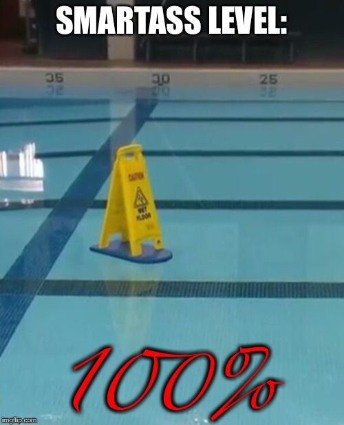 SMARTASS LEVEL:; 100% | image tagged in memes,funny memes,smartass,dumb,swimming pool,funny signs | made w/ Imgflip meme maker