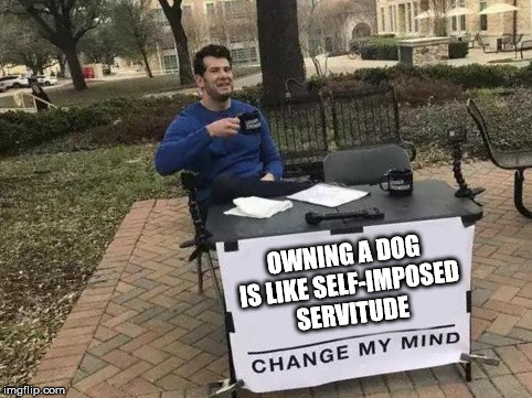 Change My Mind | OWNING A DOG IS LIKE SELF-IMPOSED SERVITUDE | image tagged in change my mind | made w/ Imgflip meme maker