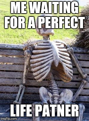 Waiting Skeleton Meme | ME WAITING FOR A PERFECT LIFE PATNER | image tagged in memes,waiting skeleton | made w/ Imgflip meme maker
