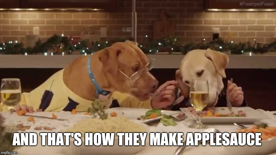 dog dinner | AND THAT'S HOW THEY MAKE APPLESAUCE | image tagged in dog dinner | made w/ Imgflip meme maker